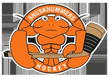 världens smutsigaste hockeylag